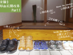 【実験】い草 de 玄関改革 Part 1